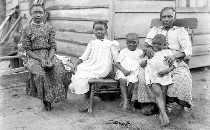 Think, Amateur african ebony