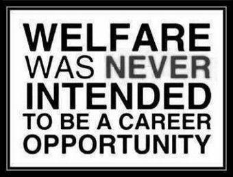 10 welfarexx